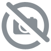 Canteloube Songs of The Auvergne <br/> Disque Vinyle de Collection APC002